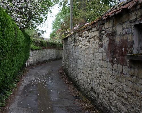 S Narrow Road