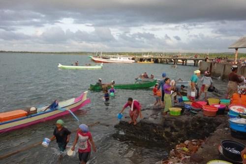 Tanjung Luar: fetching buckets of sea water