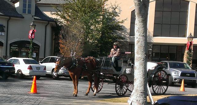 horseforum2