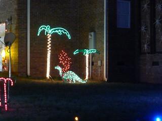 Turner Family Lights-003