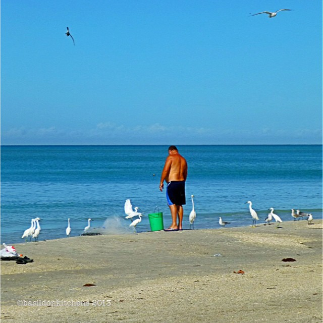 Sep 28 - 10 o'clock {lots of shore birds waiting for the fisherman to look away!} . #fmsphotoaday #madeirabeach #shorebirds #gulls #egret #heron #gulfofmexico #morning #beach