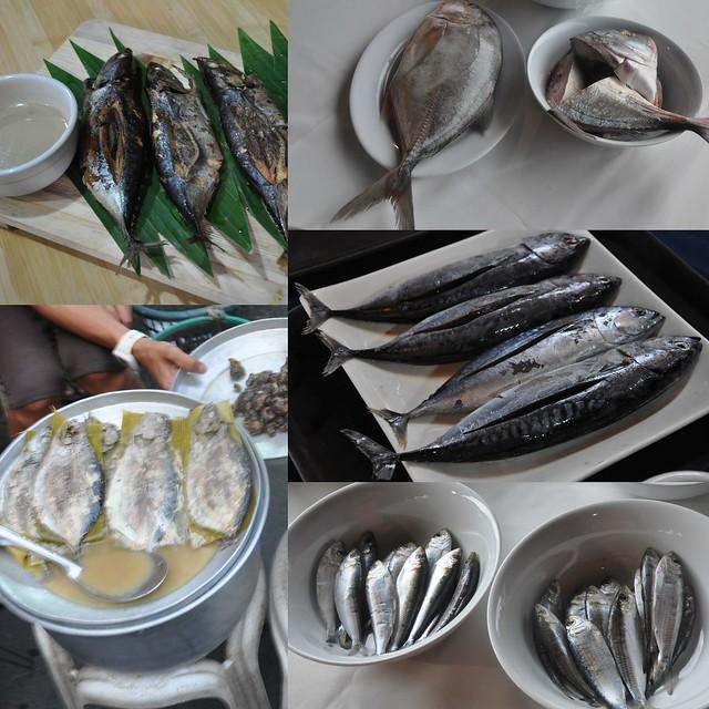 Isda sa Batangas
