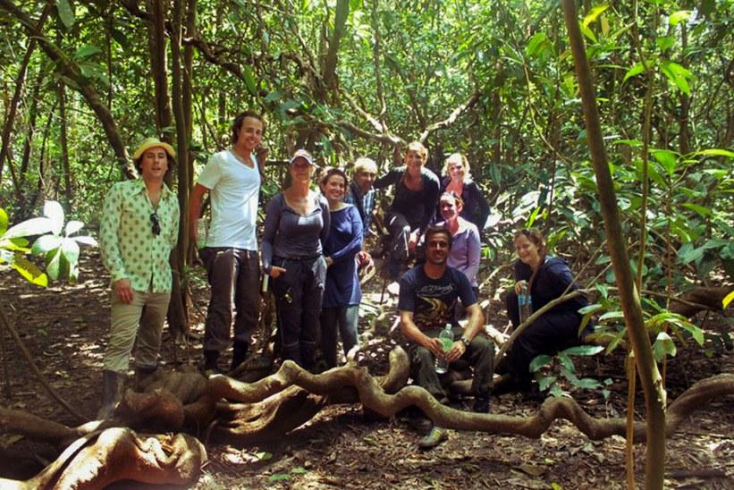 trekking på Borneo