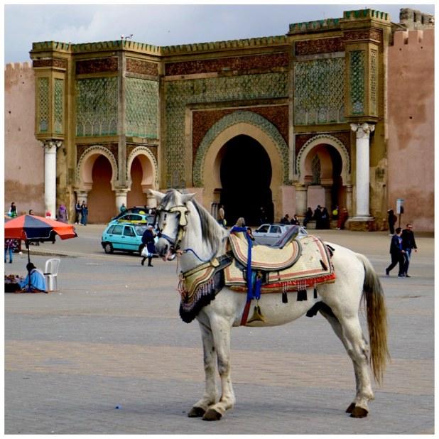 Puerta Bab al-Mansour Meknes