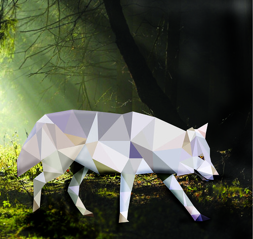 wolfpoly