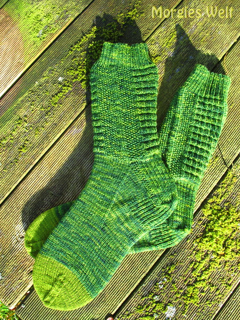 2013-11-07_Crocodile-Socks_0003_klein