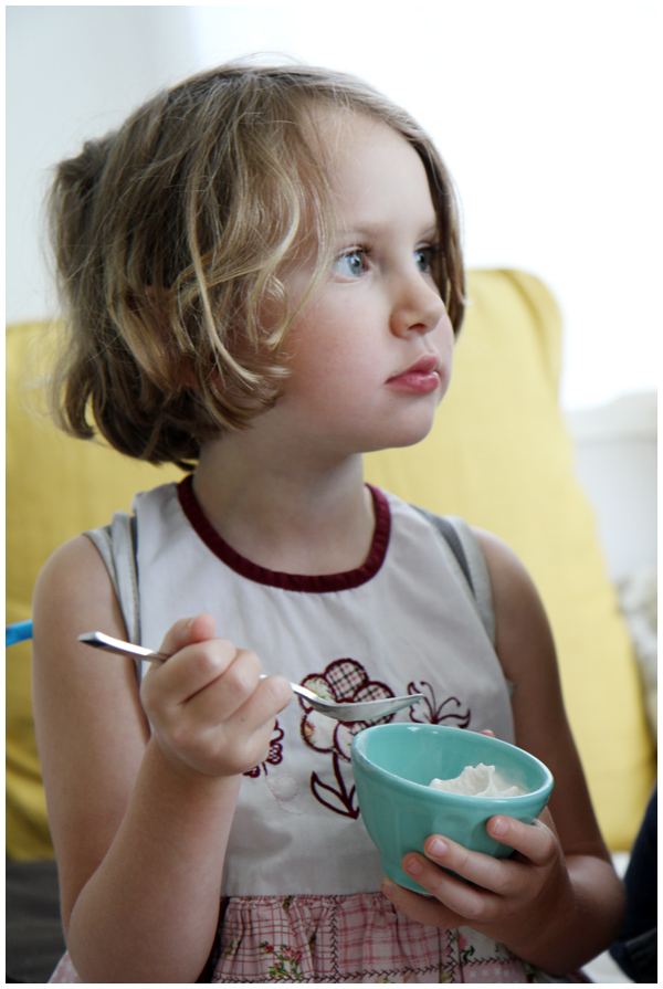 Vanilla Coconut Milk Ice Cream Recipe (dairy and gluten-free, sweetened with maple syrup)