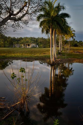 Cuba Sunset landscape by Rey Cuba