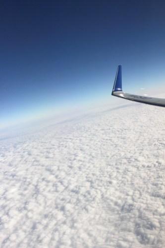 737-800のウイングレット