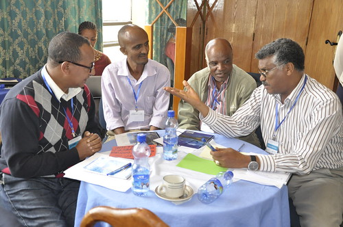 Participants discuss key issues to take forward (Credit: ILRI/Meron Mulatu)