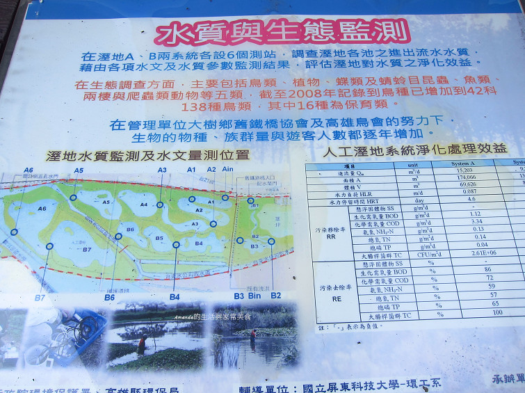 大樹舊鐵橋生態公園 (48)