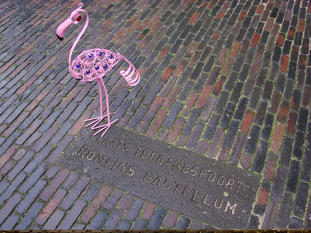 A Flamingo in Utrecht