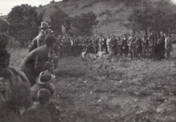 koa_1932