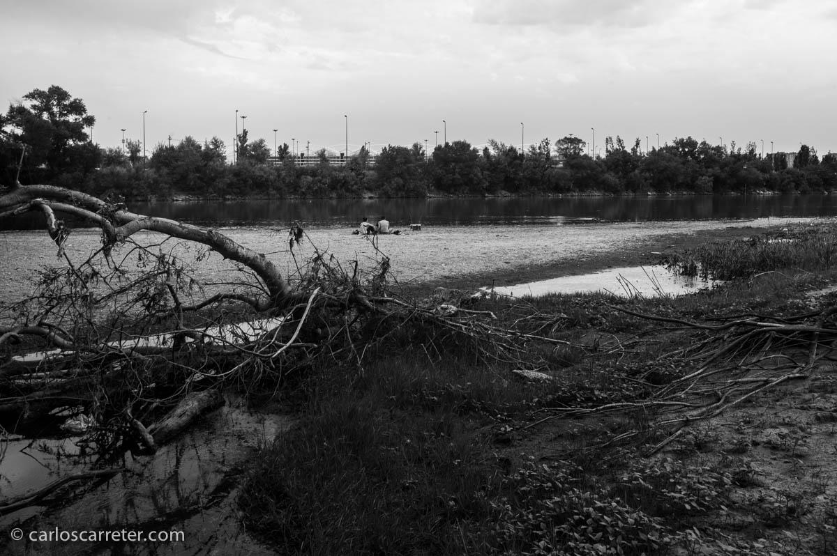 La ribera del Ebro
