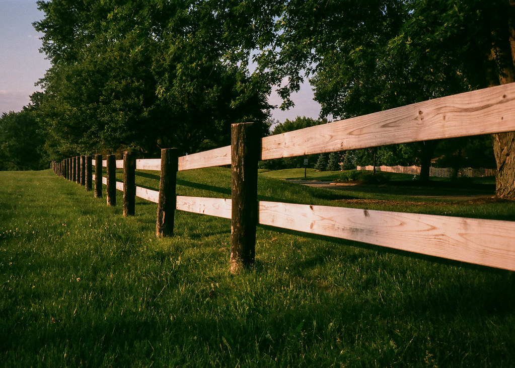 Golden fence