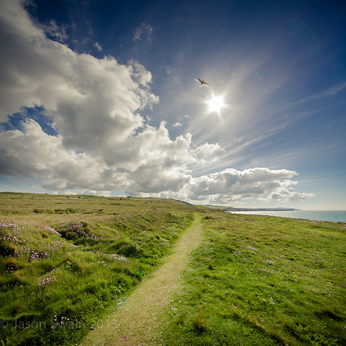 Freshwater Bay Coastal Path Vertorama