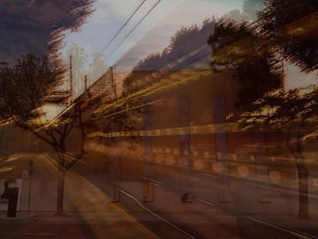 Camera Roll-2690