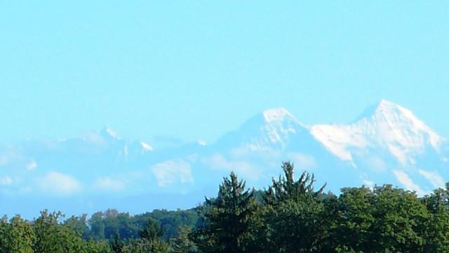 View of the Bernese Alps from Feldbrunnen