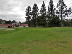 Griffith Park - Wilson #18 h chip top green 532