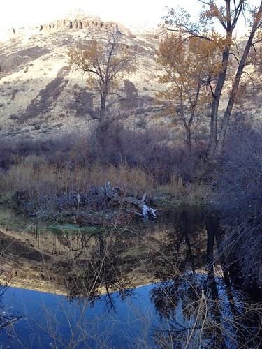 Umtanum Creek hike