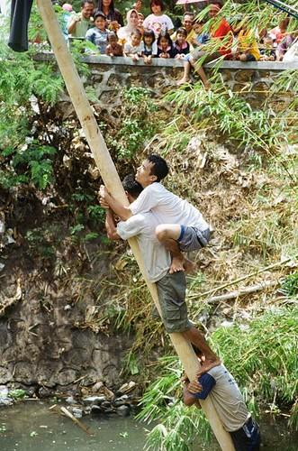 Pole Climbing Fun