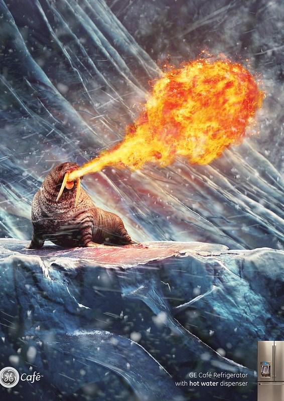 GE - Polar bear hit
