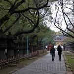 Tokyo-Ueno-04