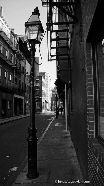 danbo_boston-61
