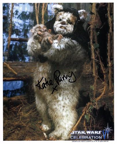 006-Katie Purvis-Maternal Ewok