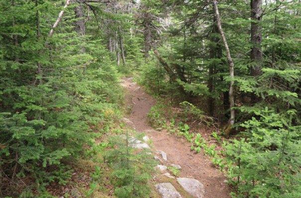 5-Lend-a-Hand-Trail