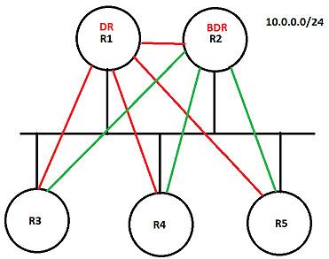 OSPF-DR-3
