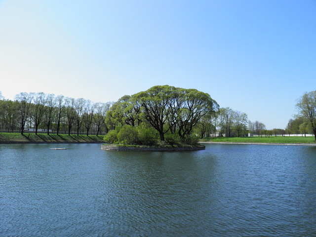 Остров в пруду // Island in pond