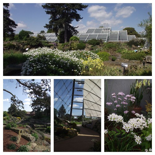 Rock Gardens -Kew