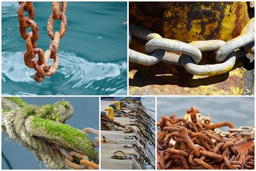 Elba 2013 2013-06-029