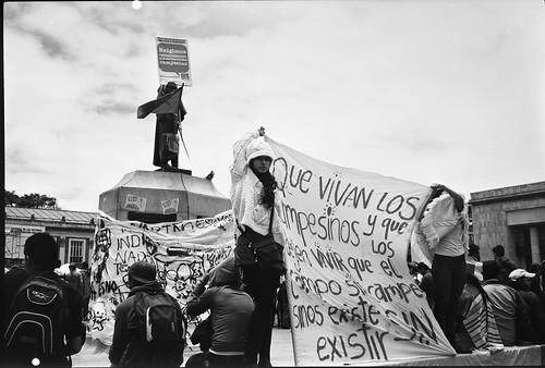 Que vivan los campesinos by Felipe Cardenas-Tamara