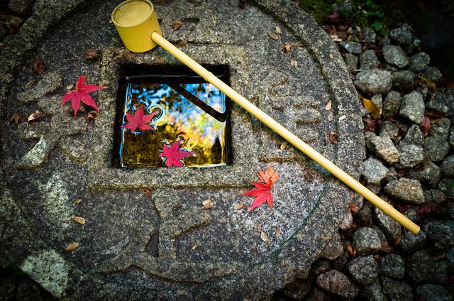 momiji '13 - autumn leaves #16 (Konpuku-ji temple, Kyoto)