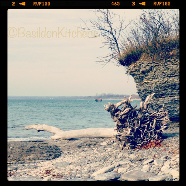 May 19 - rock {rocky shoreline, part of Sandbanks Provincial Park} #photoaday #sandbanks #beach #rocks #princeedwardcounty