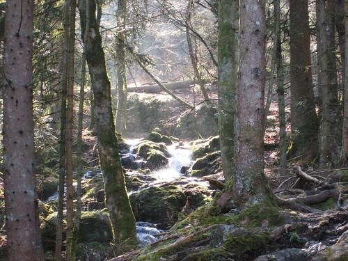 Cascade de la Serva,  Vosges