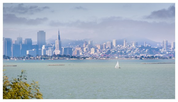 Morning Glory - San Francisco - 2013