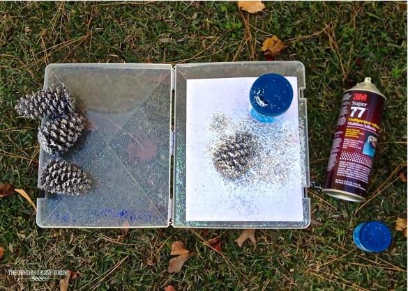 Glittered Pinecones-005