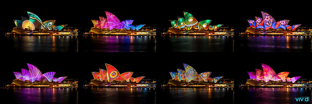 Colours of the Sydney Opera House during vivid Sydney 2013