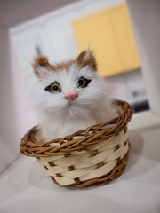 Purrfect_Cat_Cafe_Doll_Meat_13