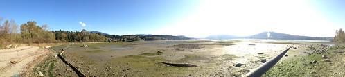Mudflats panorama