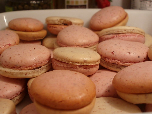 Tricolour Macarons