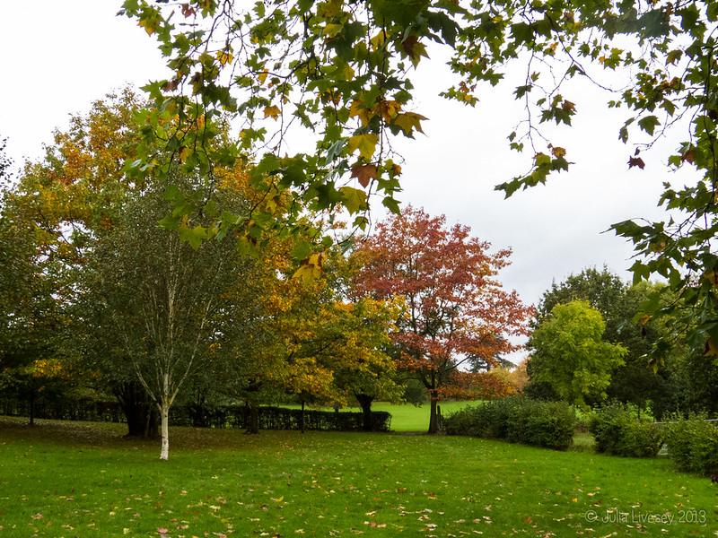 Autumn colout