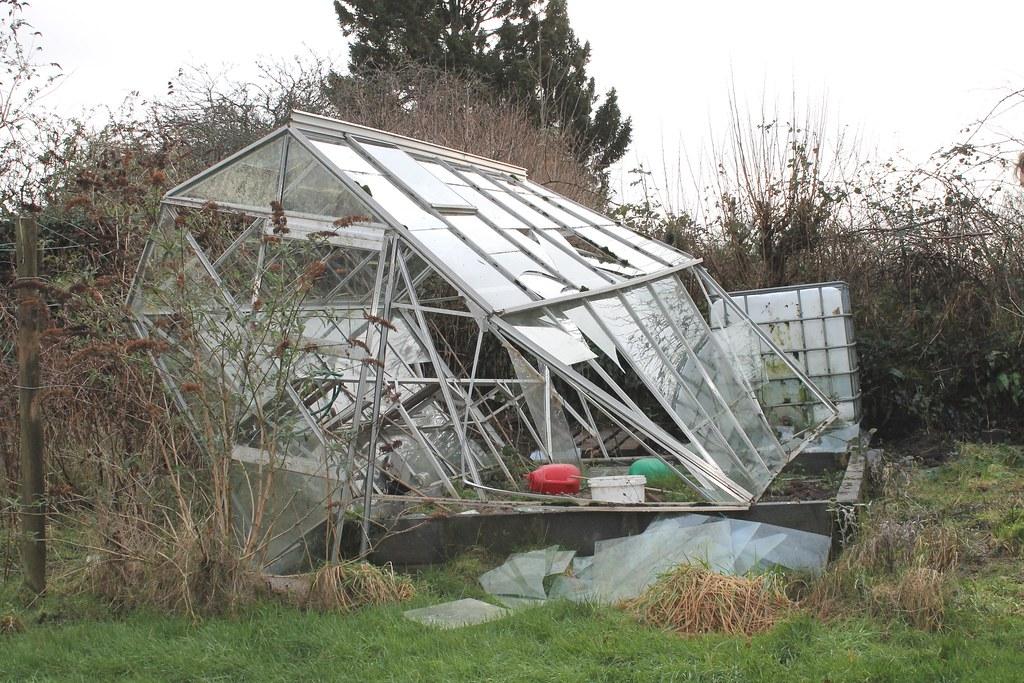 dead greenhouse