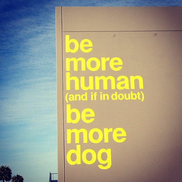 New office mural #whereiwork #bemorehuman #bemoredog