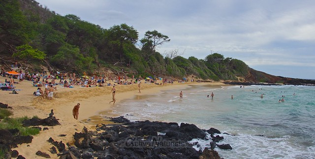 naturist 0002 Little Beach, Maui, Hawaii, USA