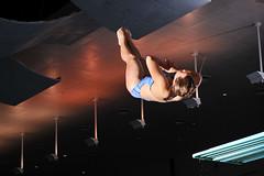 """USAFA Diving 2"" US Air Force photo by Liz Copan"