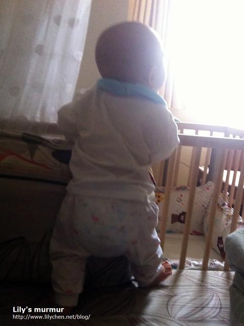 自從發現自己能站之後,小妮三不五時就要扶著床欄站一下。
